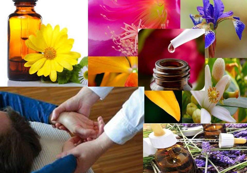 Formación en Naturopatía para la elaboración de tratamientos florales